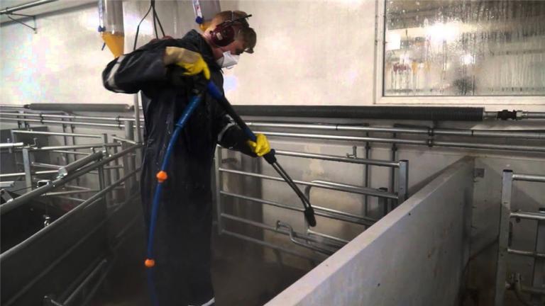 Vask og desinfektion af svinestalde - Danvet