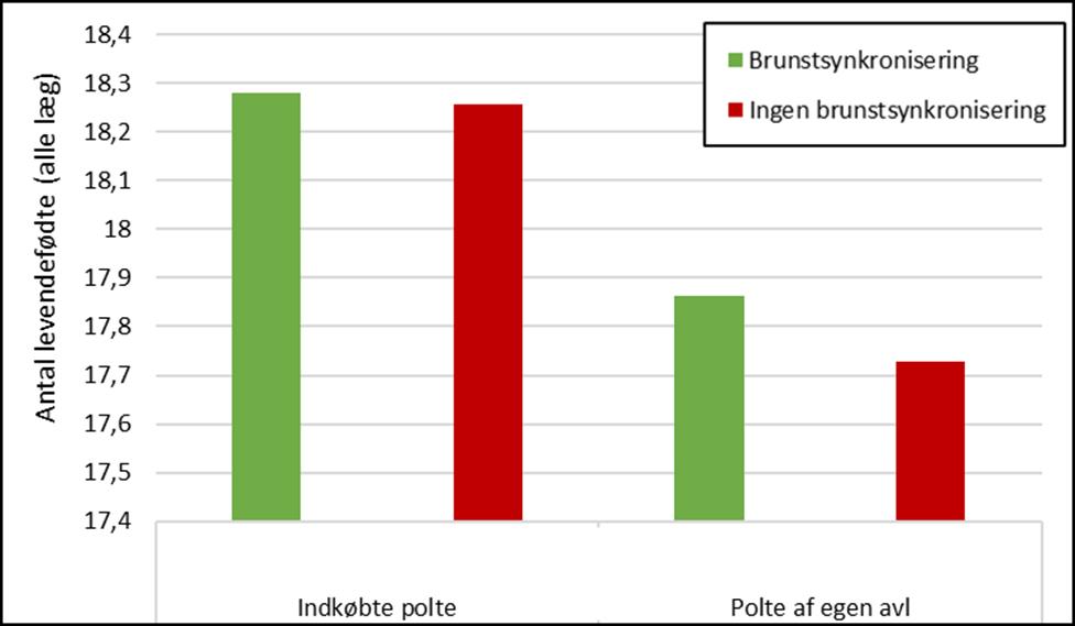 Antal levendefødte i alle kuld med og uden brunstsynkronisering